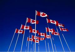 加拿大网课代修哪里有?找加拿大代修网课