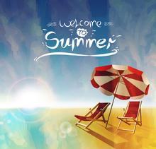 summer online course网课代修!
