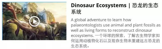 香港大学网课推荐:恐龙的生态系统